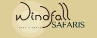 Windfall Safaris Logo